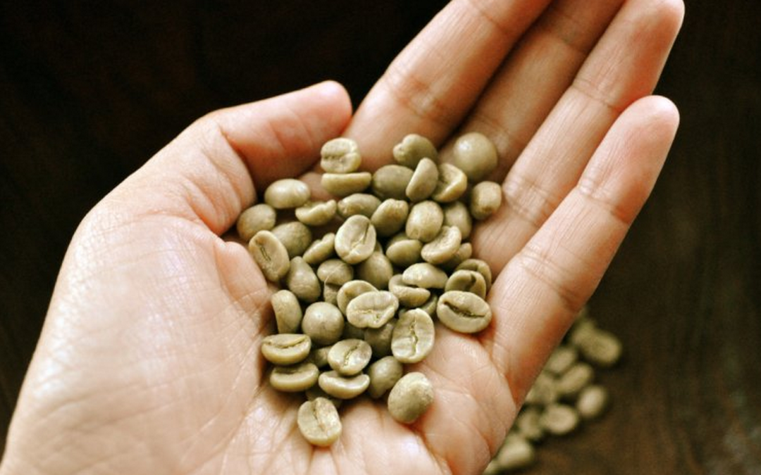 Roasting Your Own Coffee Beans