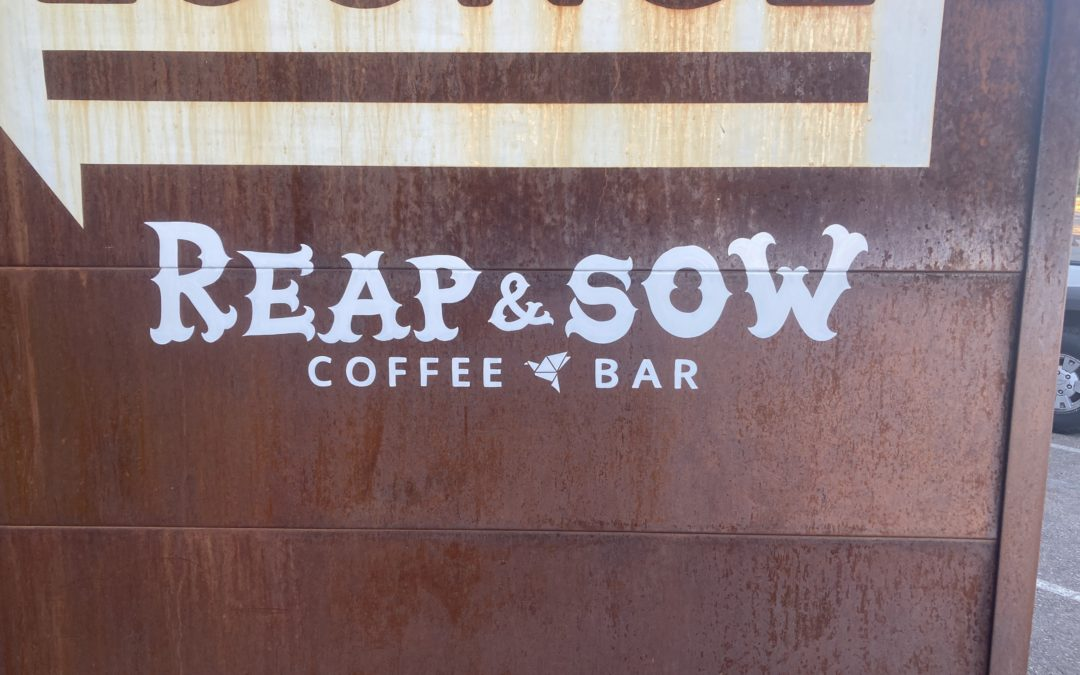 Reap and Sow Coffee Bar, making it through COVID.